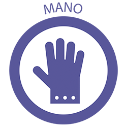 Productos desechables para tus manos